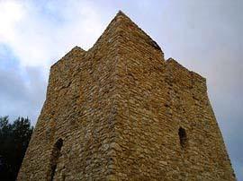 Torre Gargano particolare